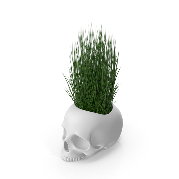 Skull Head Flower Pot with Grass PNG & PSD Images