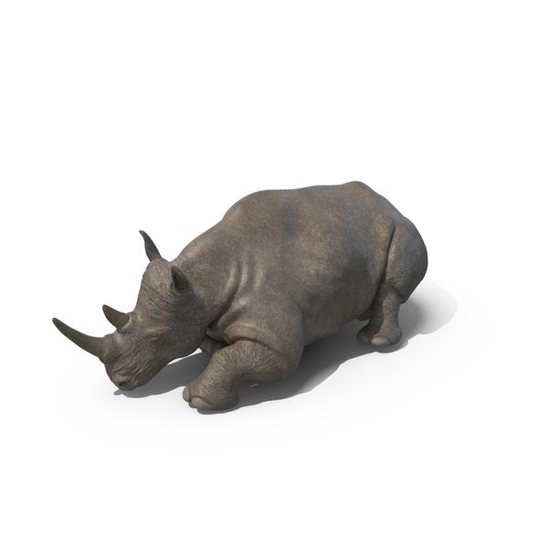 Sleeping Rhino PNG & PSD Images