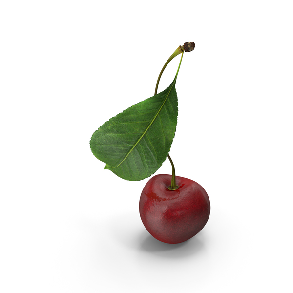 Sour Cherry with Leaf PNG & PSD Images