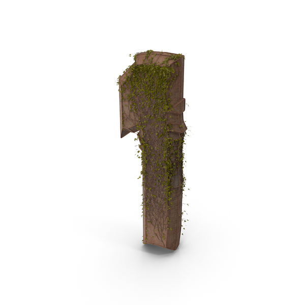 Stone With Ivy Number 1 PNG & PSD Images