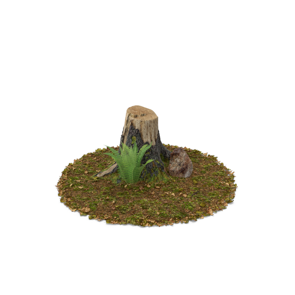 Stump with Rock and Fern Object