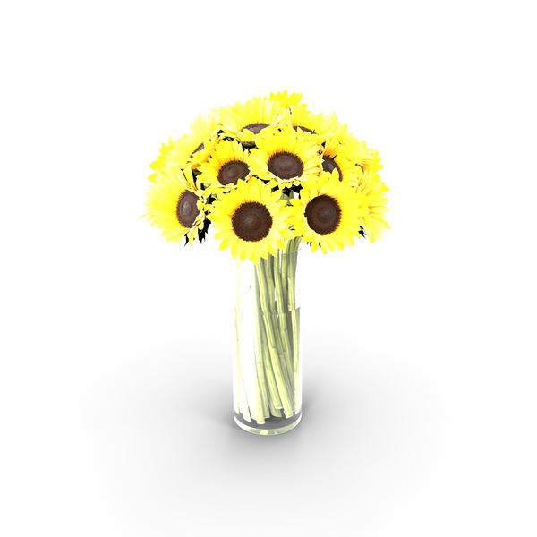 Sunflowers Bouquet PNG & PSD Images