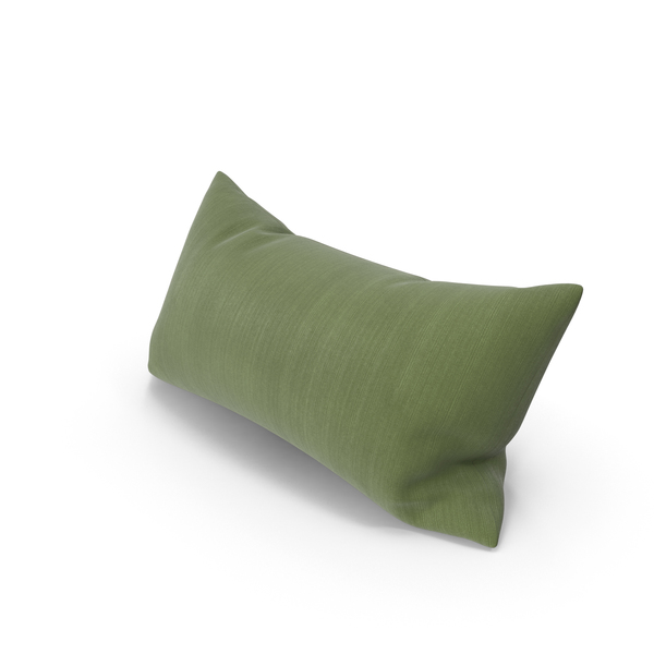 Throw Pillow Object