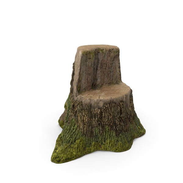 Tree Stump Object