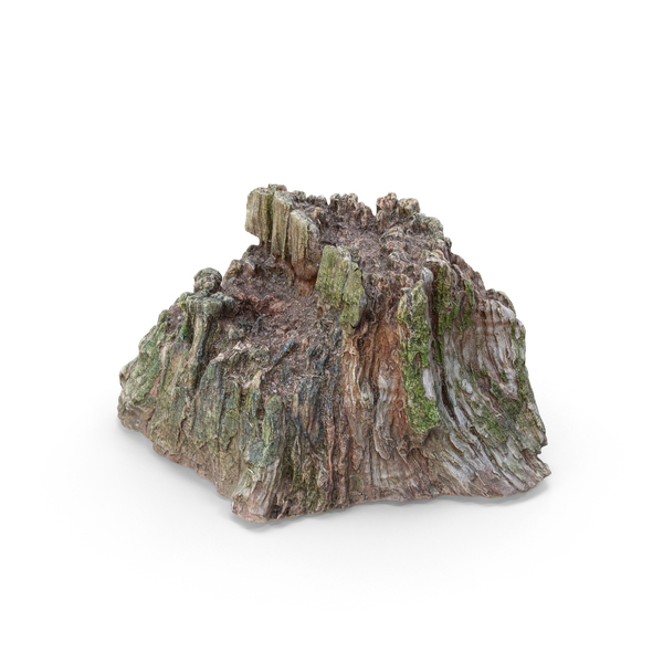 Tree Stump PNG & PSD Images