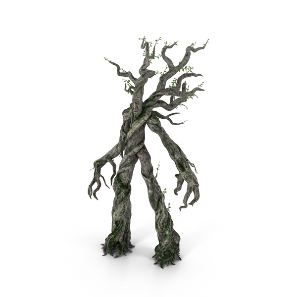 Treefolk PNG & PSD Images