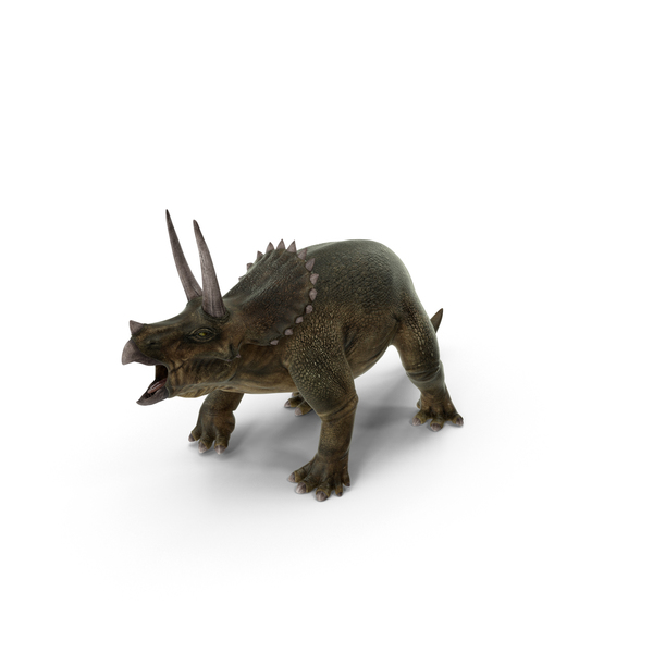 Triceratops PNG & PSD Images