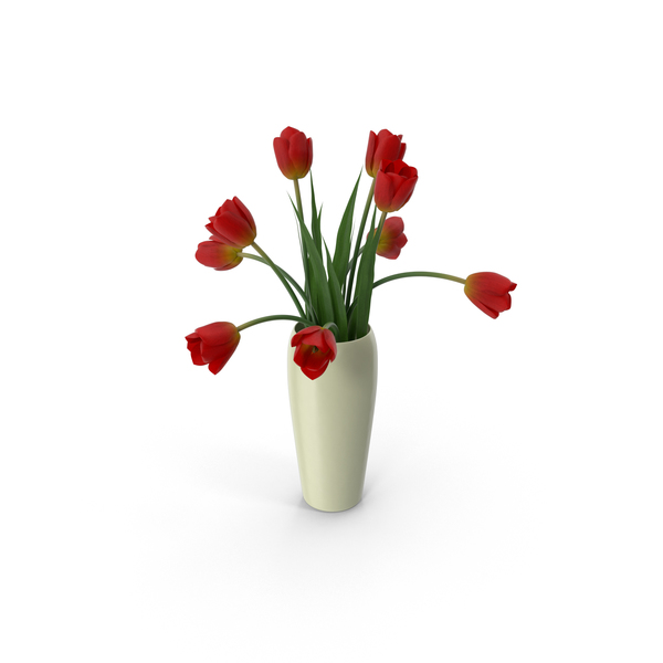 Tulips in a Vase PNG & PSD Images