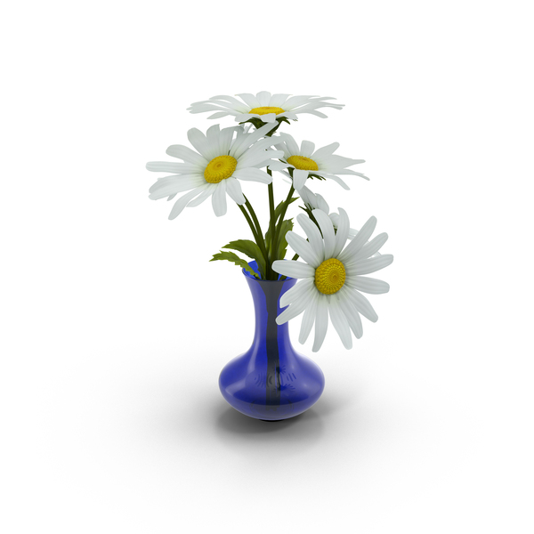 Daisy: Vase Full of Daisies PNG & PSD Images