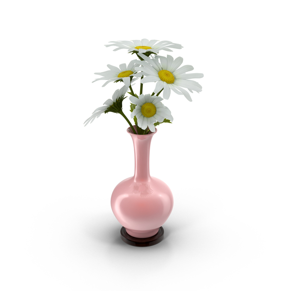 Vase Full Of Daisies PNG & PSD Images