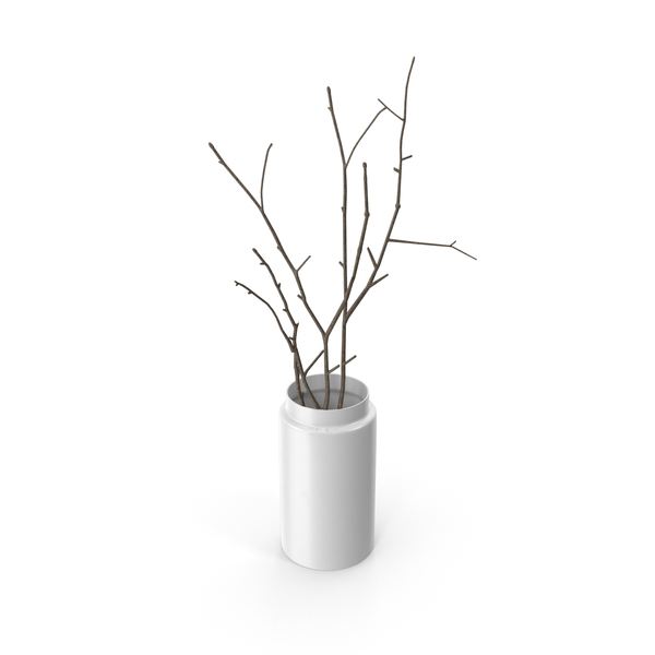 Vase with Branches PNG & PSD Images