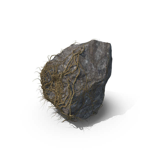 Vine Covered Rock PNG & PSD Images