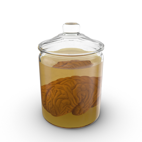 Specimen: Vintage Jar with Brain PNG & PSD Images