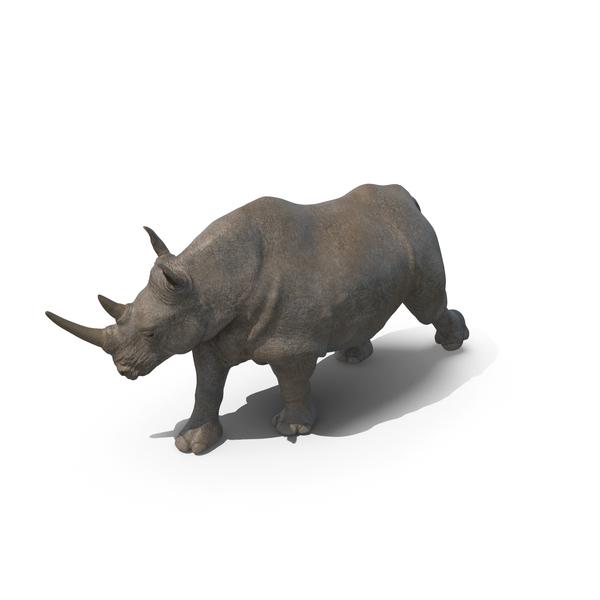 Rhinoceros: Walking Rhino PNG & PSD Images