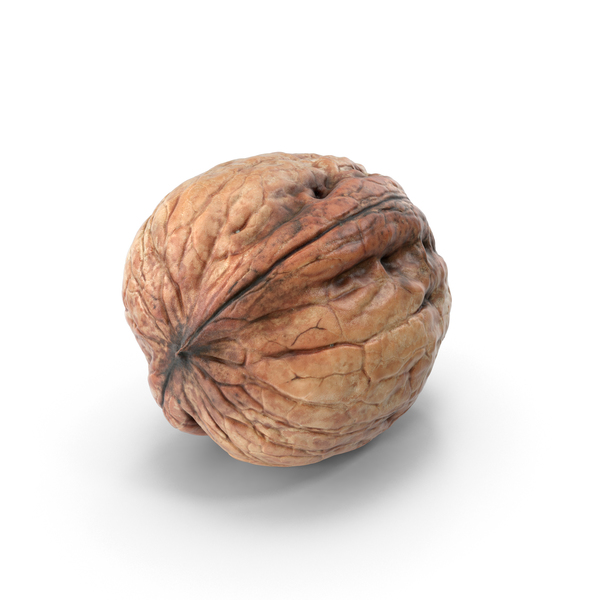 Walnut PNG & PSD Images