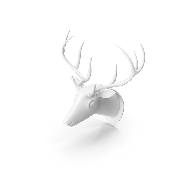 Animal: White Deer Trophy Head PNG & PSD Images