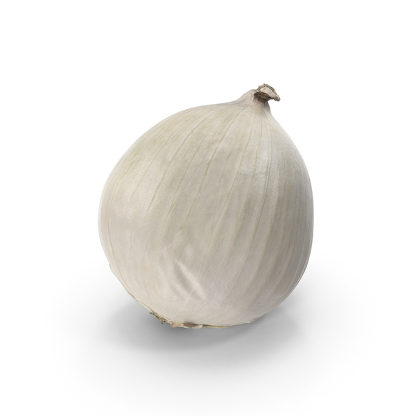 White Onion PNG & PSD Images