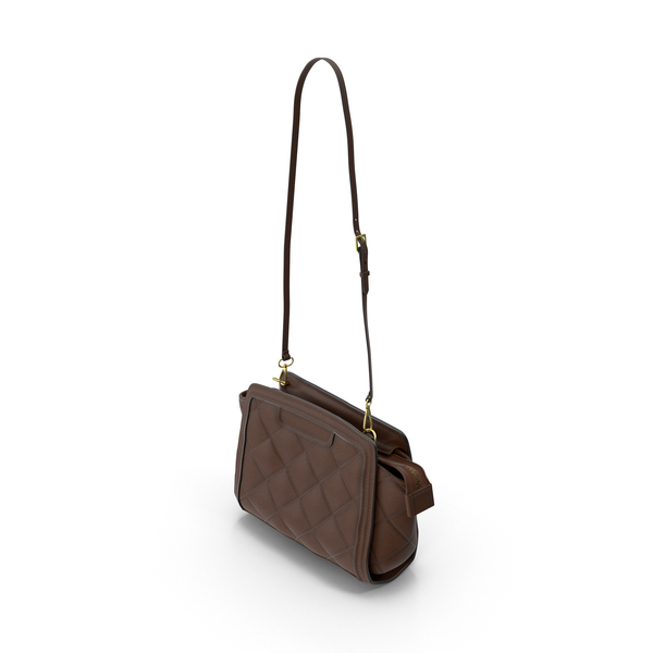 Women's Bag Brown PNG & PSD Images