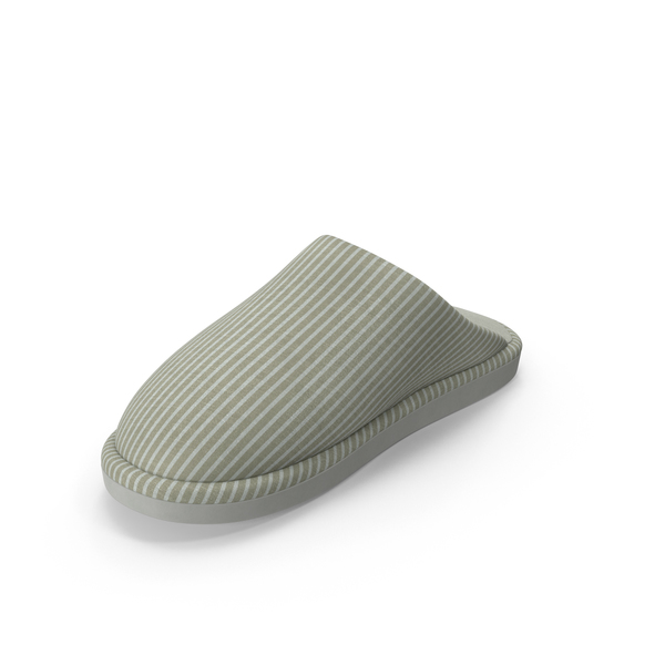 Women's Slipper PNG & PSD Images