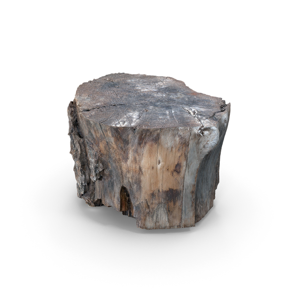 Wood Log PNG & PSD Images
