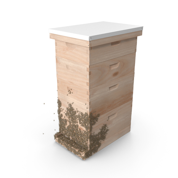 Bee Hive: Wooden Beehive Brood Box with Bees PNG & PSD Images