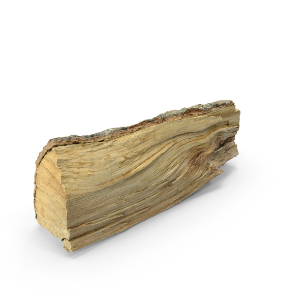 Wooden Log PNG & PSD Images