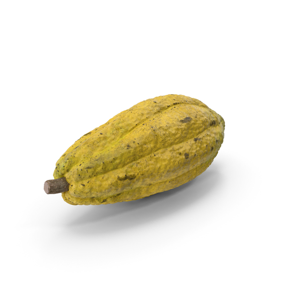 Bean: Yellow Cocoa Fruit PNG & PSD Images
