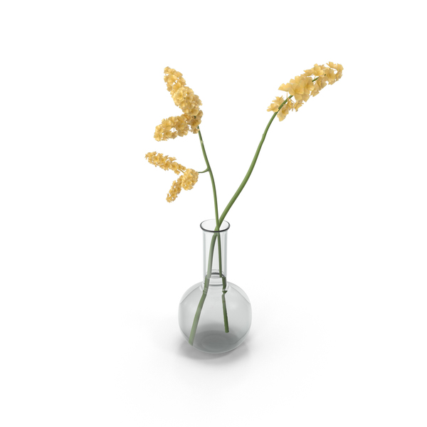 Flowering Plants: Yellow Flowers in Vase PNG & PSD Images