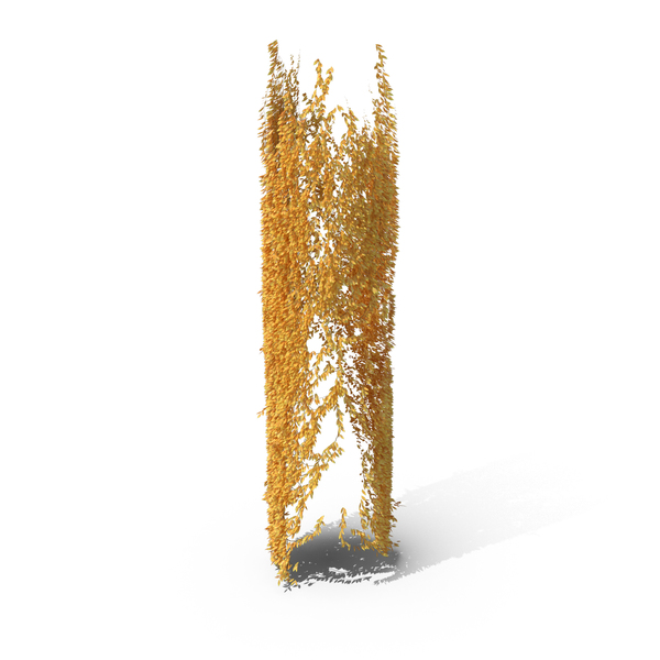Yellow Ivy Pillar PNG & PSD Images