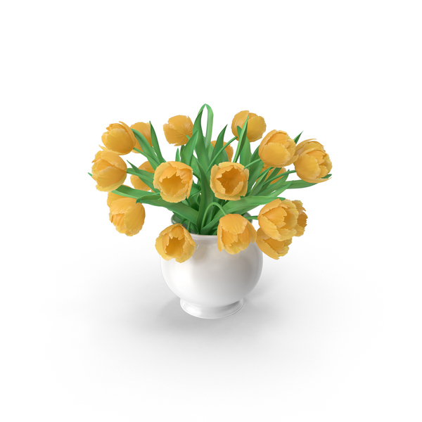 Yellow Tulips Bouquet In The Vase PNG & PSD Images